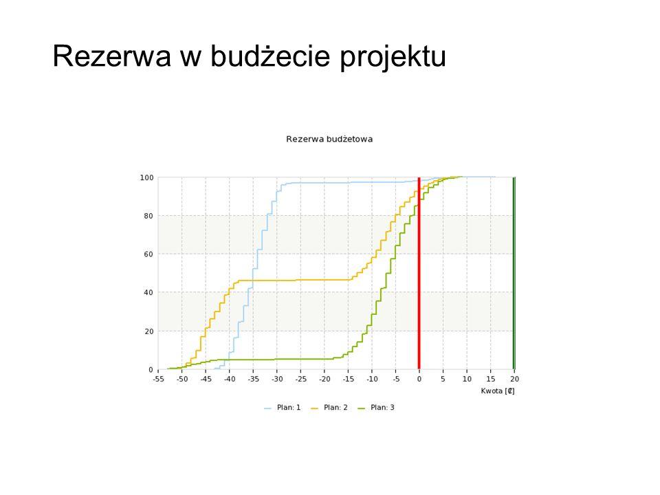 Rezerwa w budżecie projektu