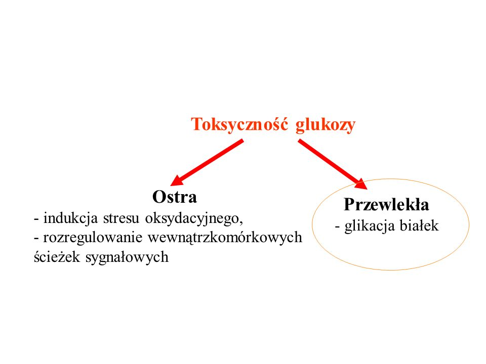 Toksyczność glukozy Ostra Przewlekła indukcja stresu oksydacyjnego,