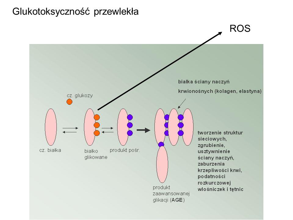 Glukotoksyczność przewlekła