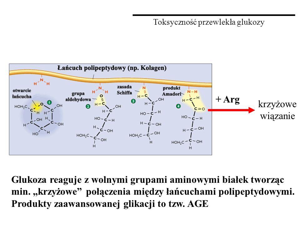 Toksyczność przewlekła glukozy