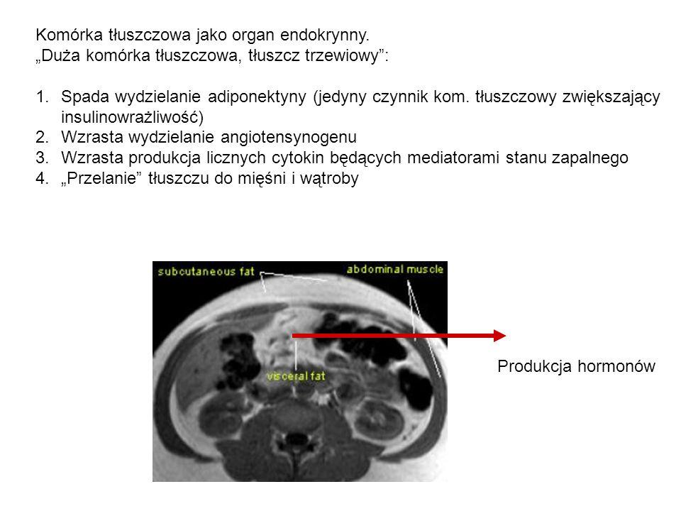 Komórka tłuszczowa jako organ endokrynny.