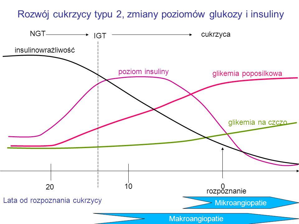 Rozwój cukrzycy typu 2, zmiany poziomów glukozy i insuliny