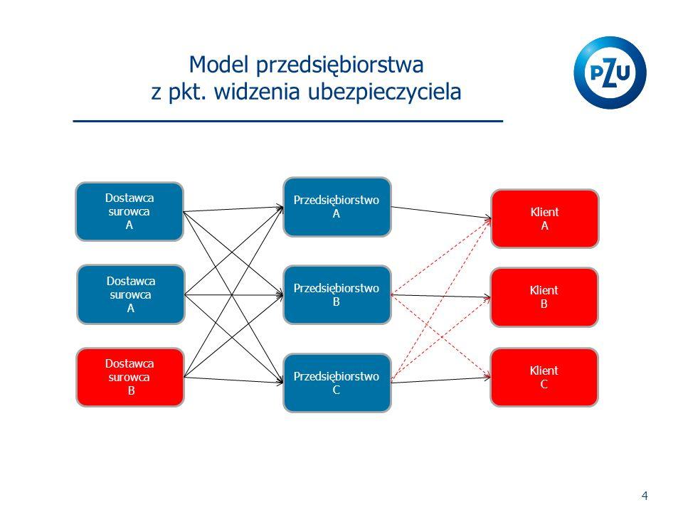 Model przedsiębiorstwa z pkt. widzenia ubezpieczyciela