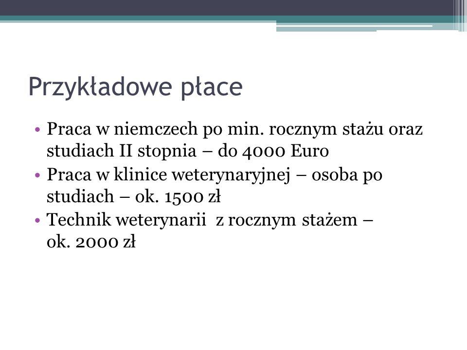 Przykładowe płace Praca w niemczech po min. rocznym stażu oraz studiach II stopnia – do 4000 Euro.