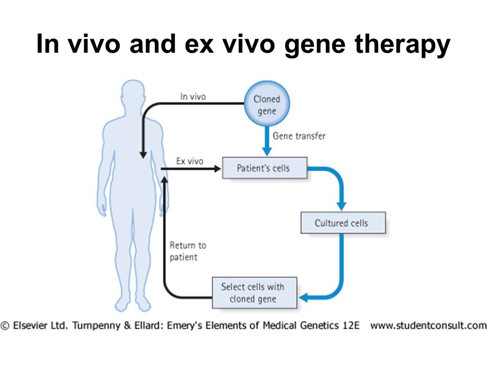 In vivo and ex vivo gene therapy