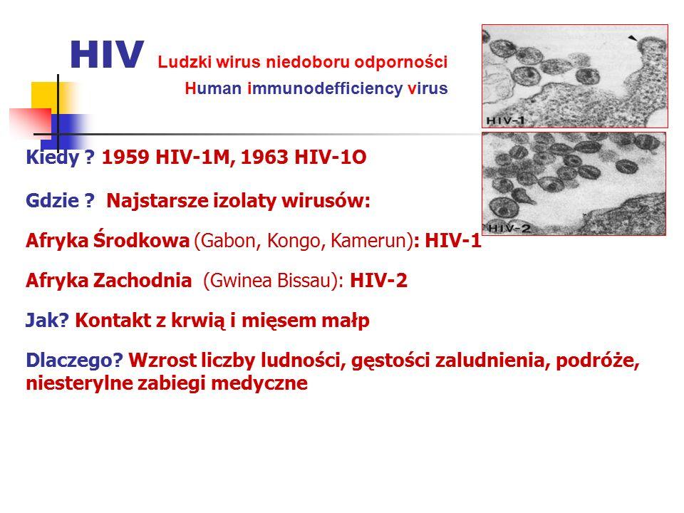HIV Ludzki wirus niedoboru odporności Human immunodefficiency virus