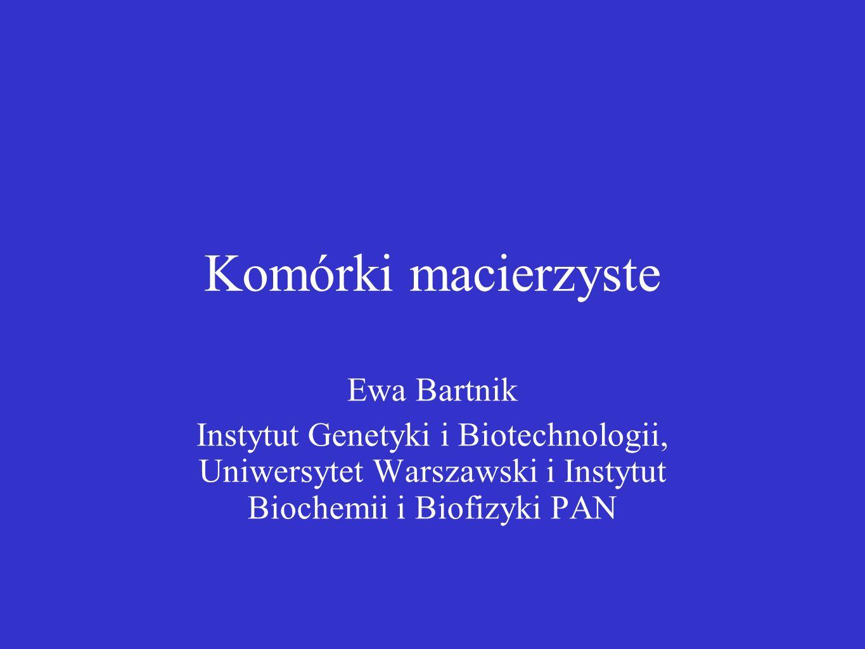 Komórki macierzyste Ewa Bartnik