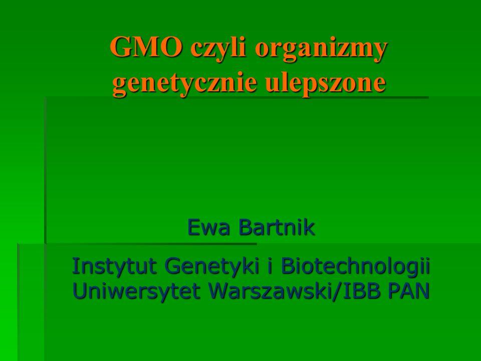 GMO czyli organizmy genetycznie ulepszone