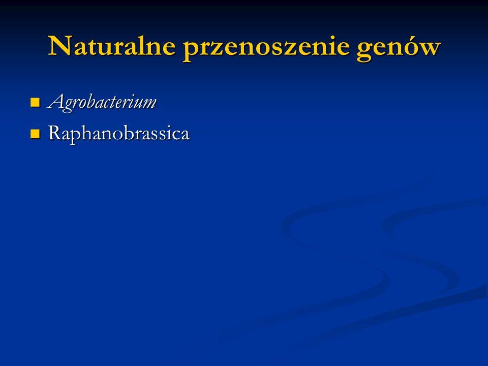 Naturalne przenoszenie genów