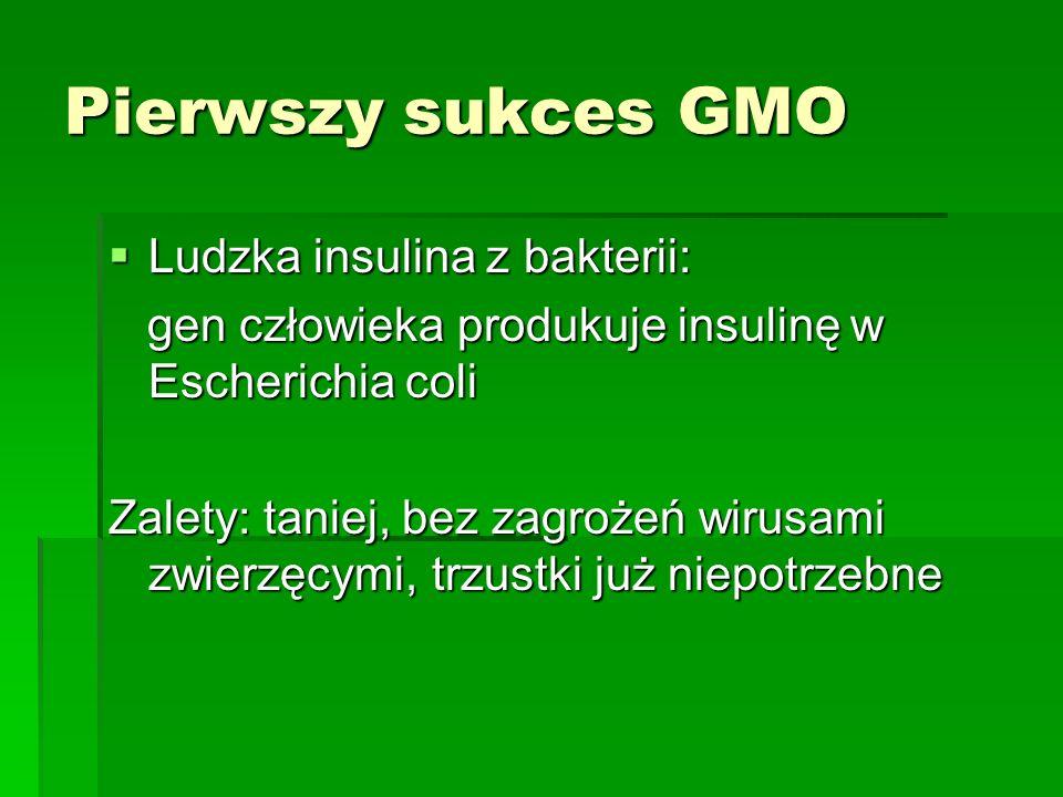 Pierwszy sukces GMO Ludzka insulina z bakterii: