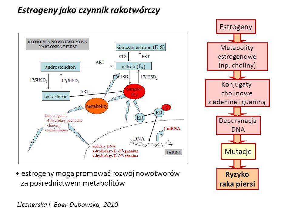 Estrogeny jako czynnik rakotwórczy