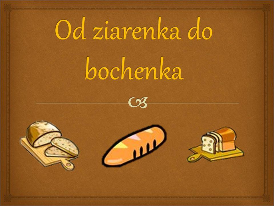 Od ziarenka do bochenka