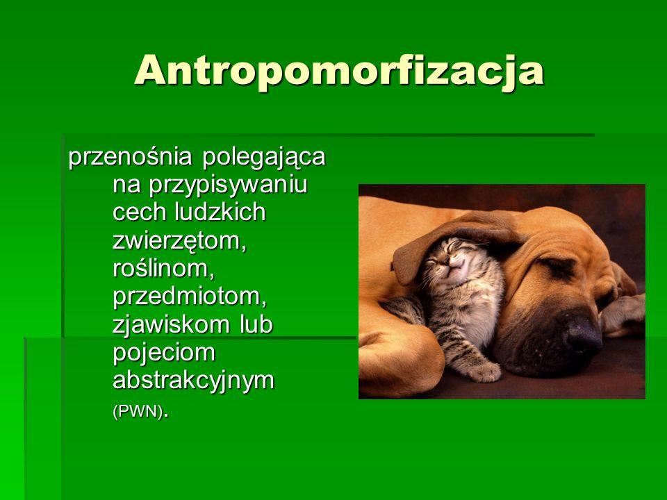 Antropomorfizacja przenośnia polegająca na przypisywaniu cech ludzkich zwierzętom, roślinom, przedmiotom, zjawiskom lub pojeciom abstrakcyjnym (PWN).