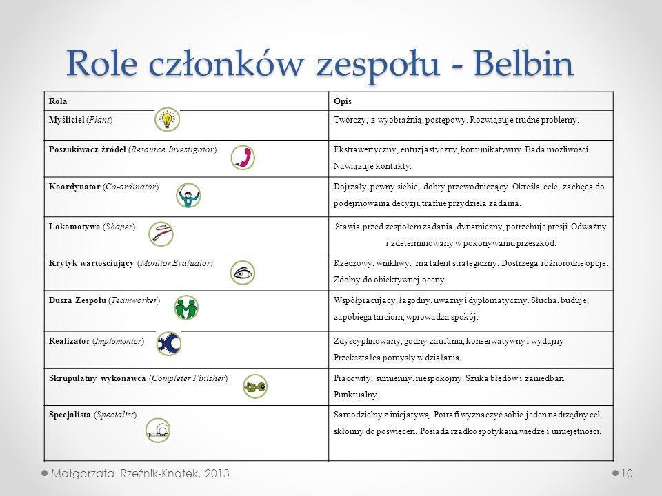 Role członków zespołu - Belbin
