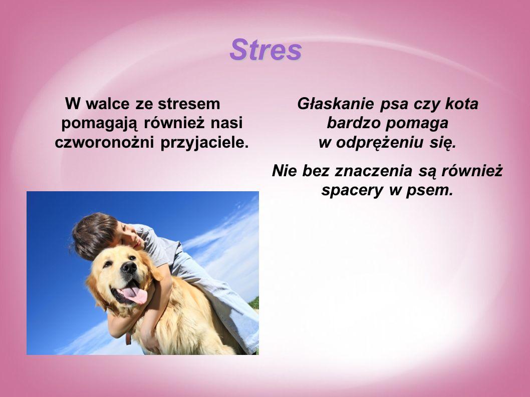 Stres W walce ze stresem pomagają również nasi czworonożni przyjaciele. Głaskanie psa czy kota bardzo pomaga w odprężeniu się.