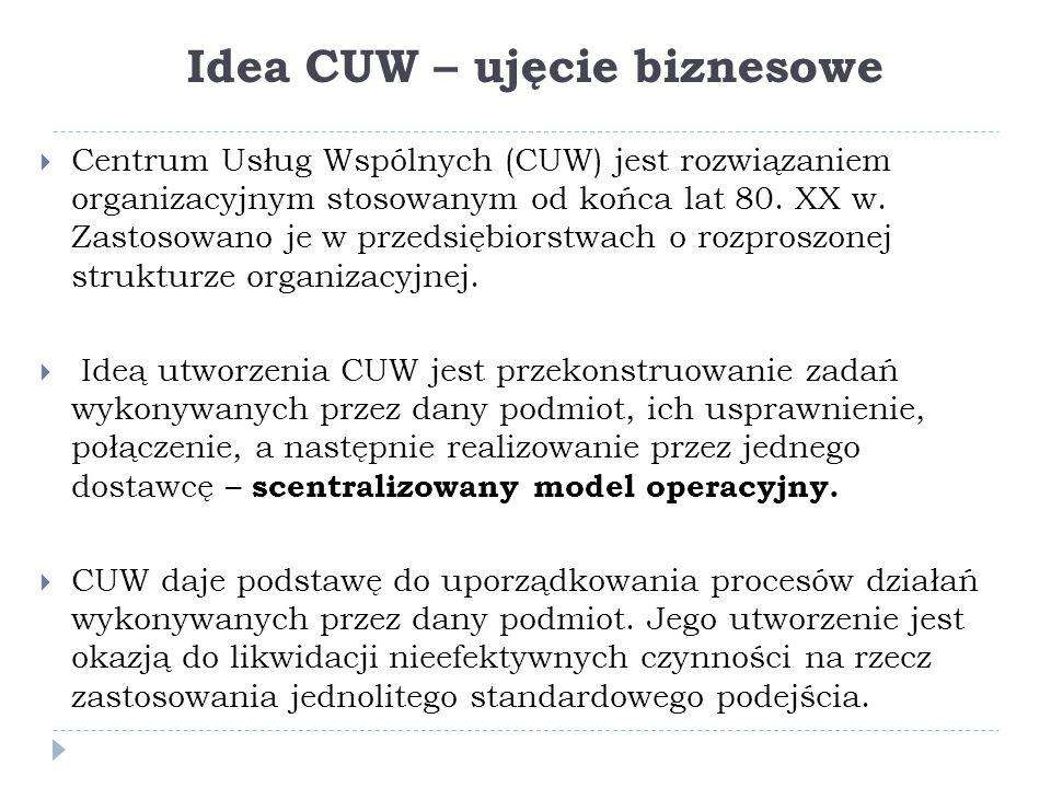 Idea CUW – ujęcie biznesowe