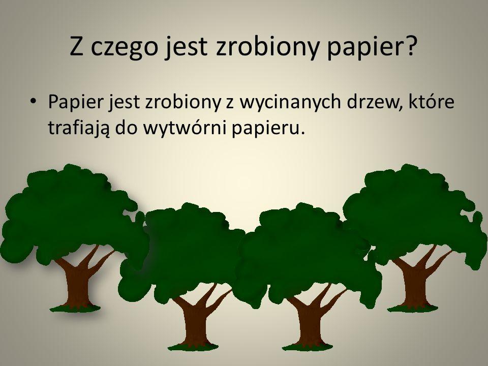 Z czego jest zrobiony papier