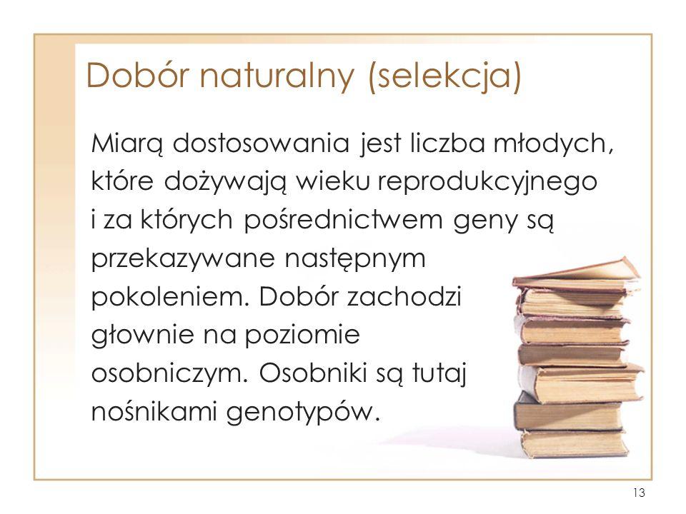 Dobór naturalny (selekcja)