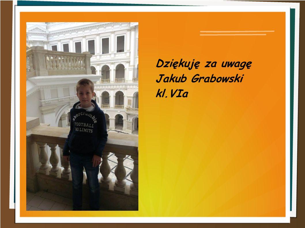 Dziękuję za uwagę Jakub Grabowski kl.VIa