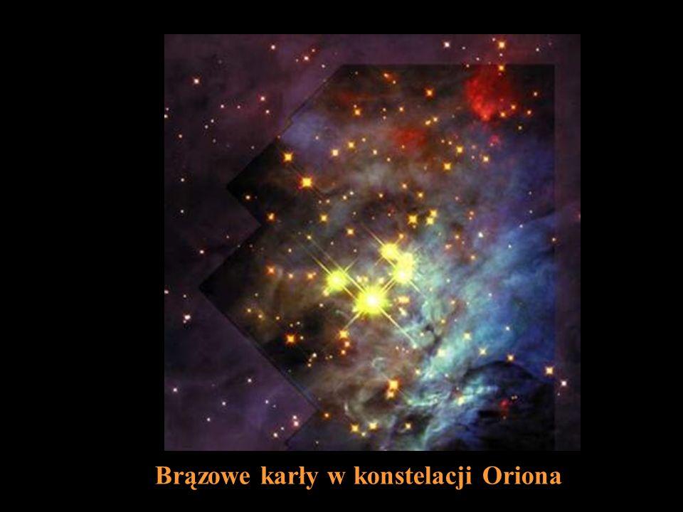 Brązowe karły w konstelacji Oriona