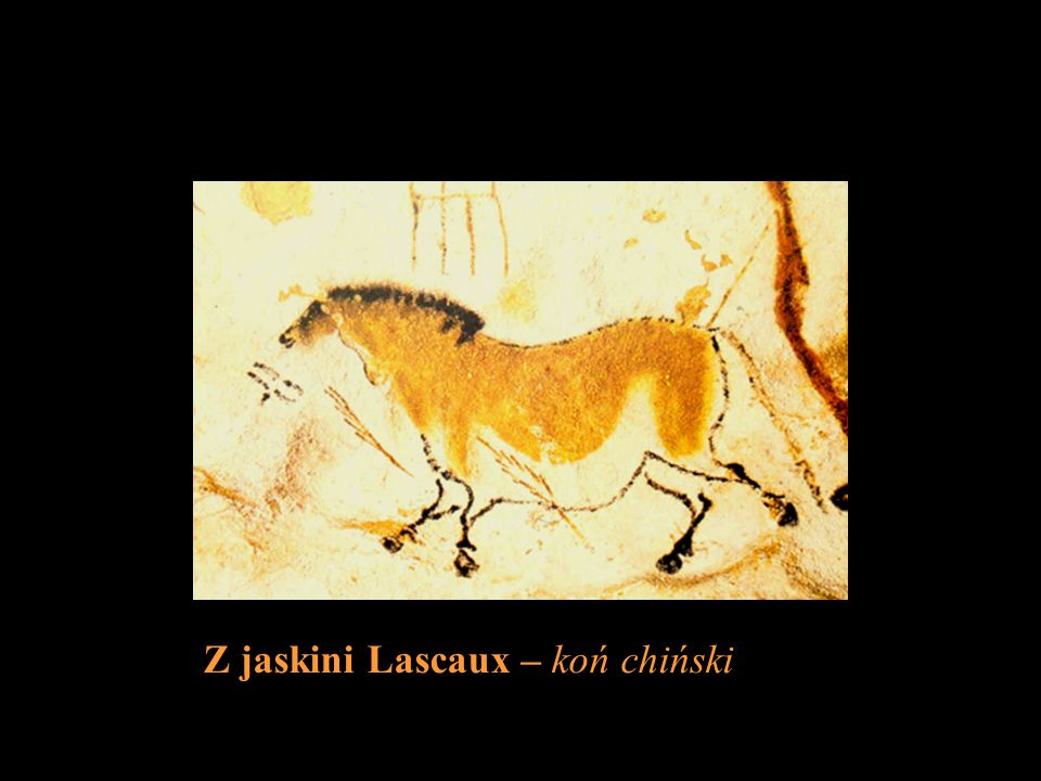 Z jaskini Lascaux – koń chiński