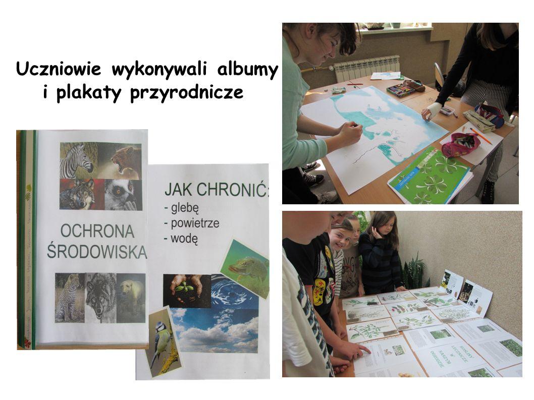 Uczniowie wykonywali albumy i plakaty przyrodnicze