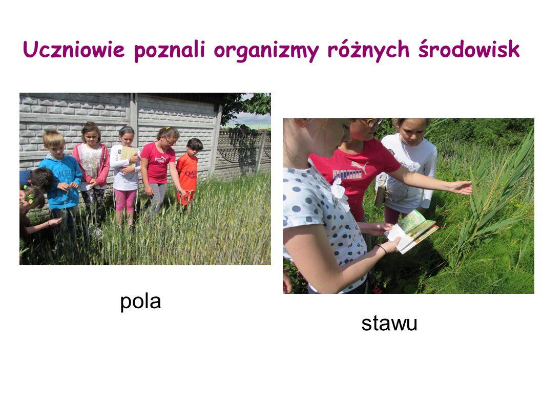 Uczniowie poznali organizmy różnych środowisk
