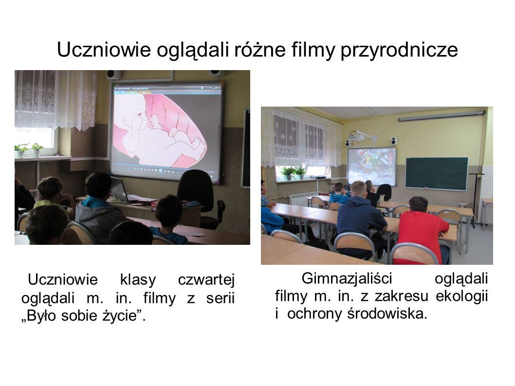 Uczniowie oglądali różne filmy przyrodnicze