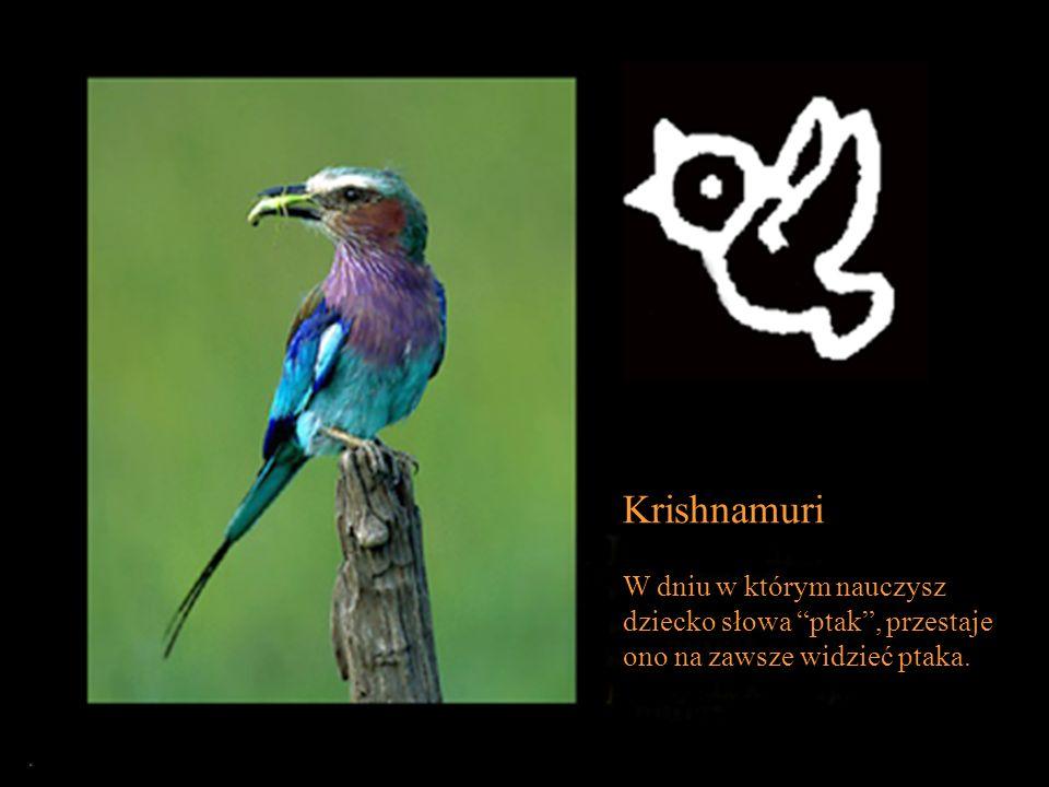 Krishnamuri W dniu w którym nauczysz dziecko słowa ptak , przestaje ono na zawsze widzieć ptaka.