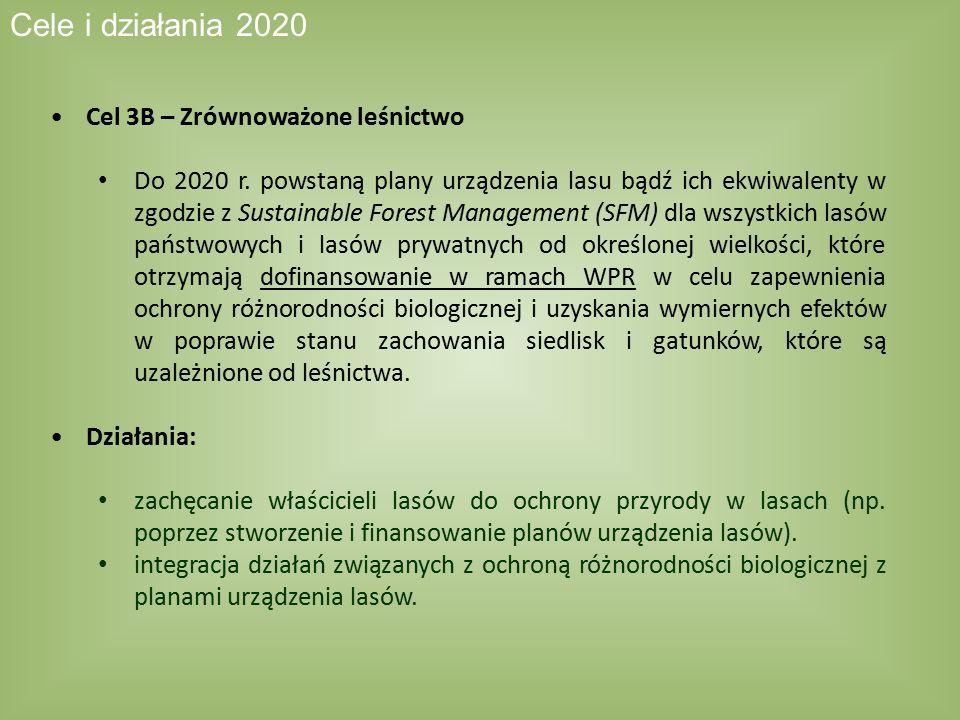 Cele i działania 2020 Cel 3B – Zrównoważone leśnictwo