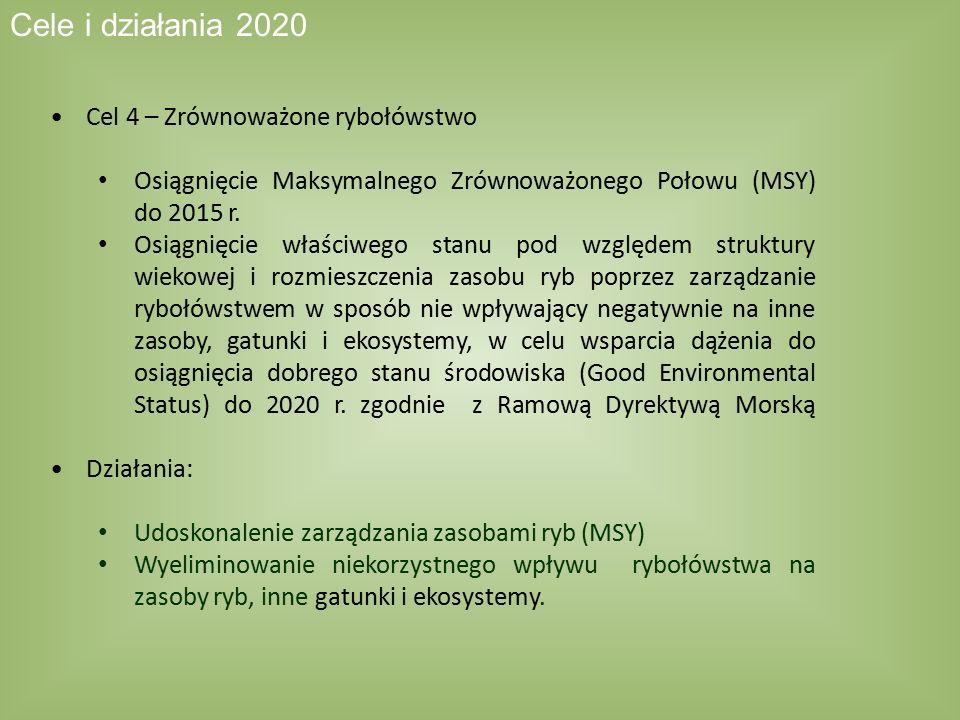 Cele i działania 2020 Cel 4 – Zrównoważone rybołówstwo