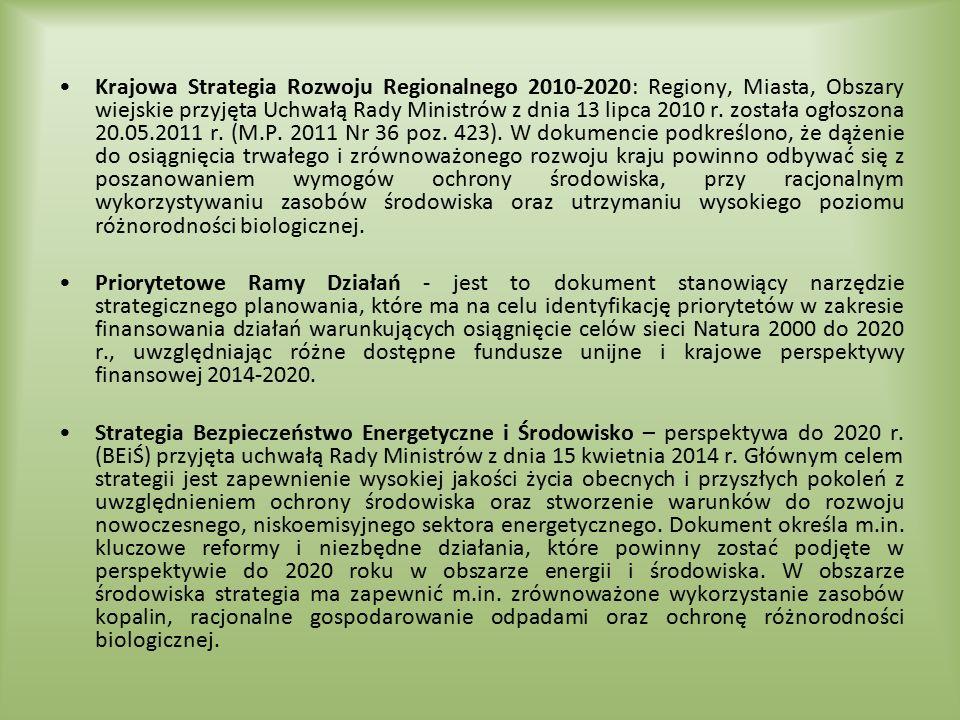 Krajowa Strategia Rozwoju Regionalnego 2010-2020: Regiony, Miasta, Obszary wiejskie przyjęta Uchwałą Rady Ministrów z dnia 13 lipca 2010 r. została ogłoszona 20.05.2011 r. (M.P. 2011 Nr 36 poz. 423). W dokumencie podkreślono, że dążenie do osiągnięcia trwałego i zrównoważonego rozwoju kraju powinno odbywać się z poszanowaniem wymogów ochrony środowiska, przy racjonalnym wykorzystywaniu zasobów środowiska oraz utrzymaniu wysokiego poziomu różnorodności biologicznej.