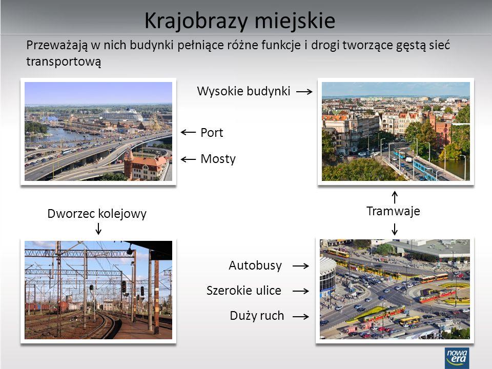 Krajobrazy miejskie Przeważają w nich budynki pełniące różne funkcje i drogi tworzące gęstą sieć transportową.