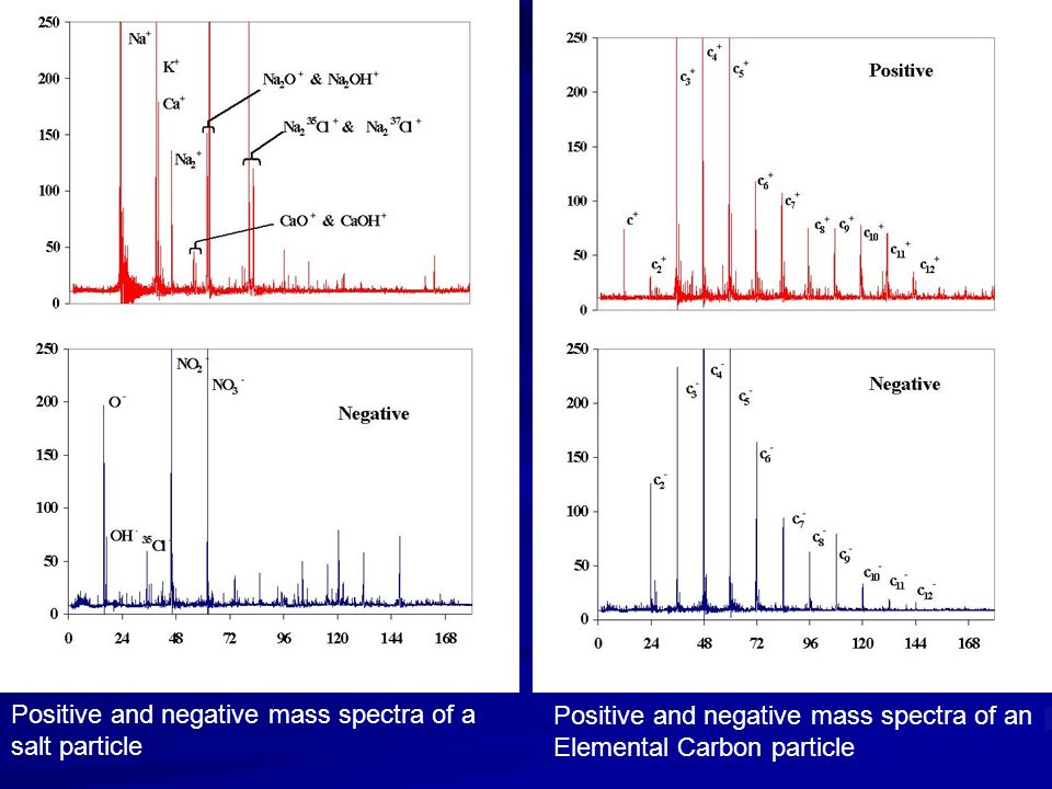 Positive and negative mass spectra of a salt particle