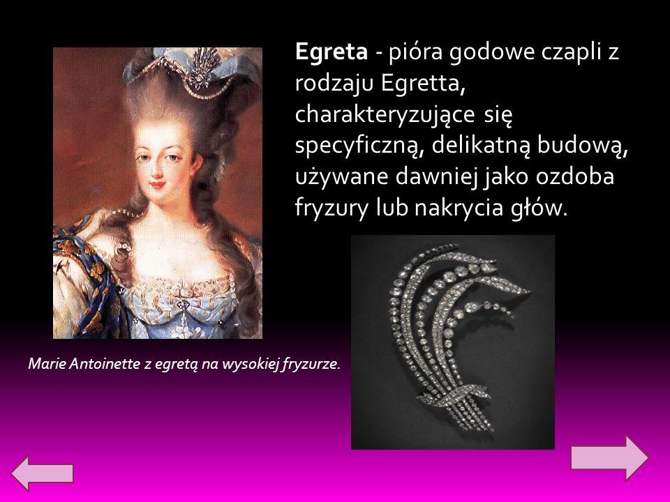Egreta - pióra godowe czapli z rodzaju Egretta, charakteryzujące się specyficzną, delikatną budową, używane dawniej jako ozdoba fryzury lub nakrycia głów.