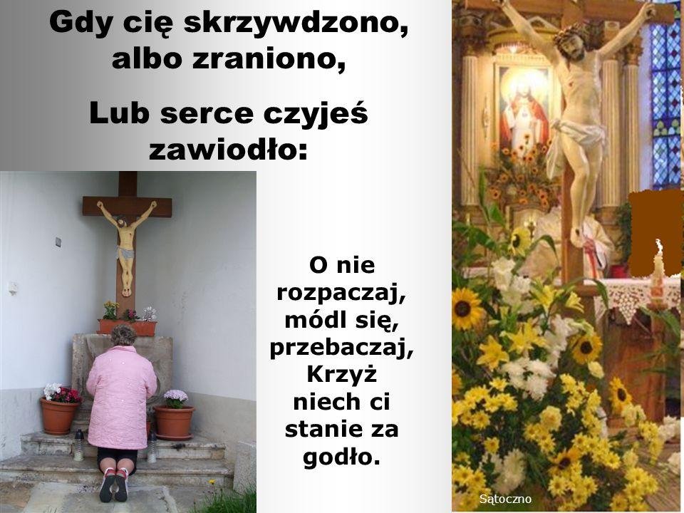 O nie rozpaczaj, módl się, przebaczaj, Krzyż niech ci stanie za godło.