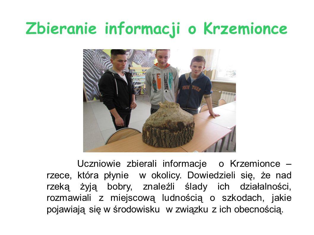 Zbieranie informacji o Krzemionce