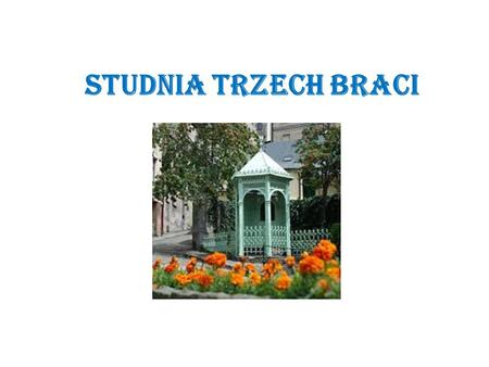 STUDNIA TRZECH BRACI. A long time ago, where now you can find a charming town of Cieszyn, there was a thick and vast forest. One day three brothers came.