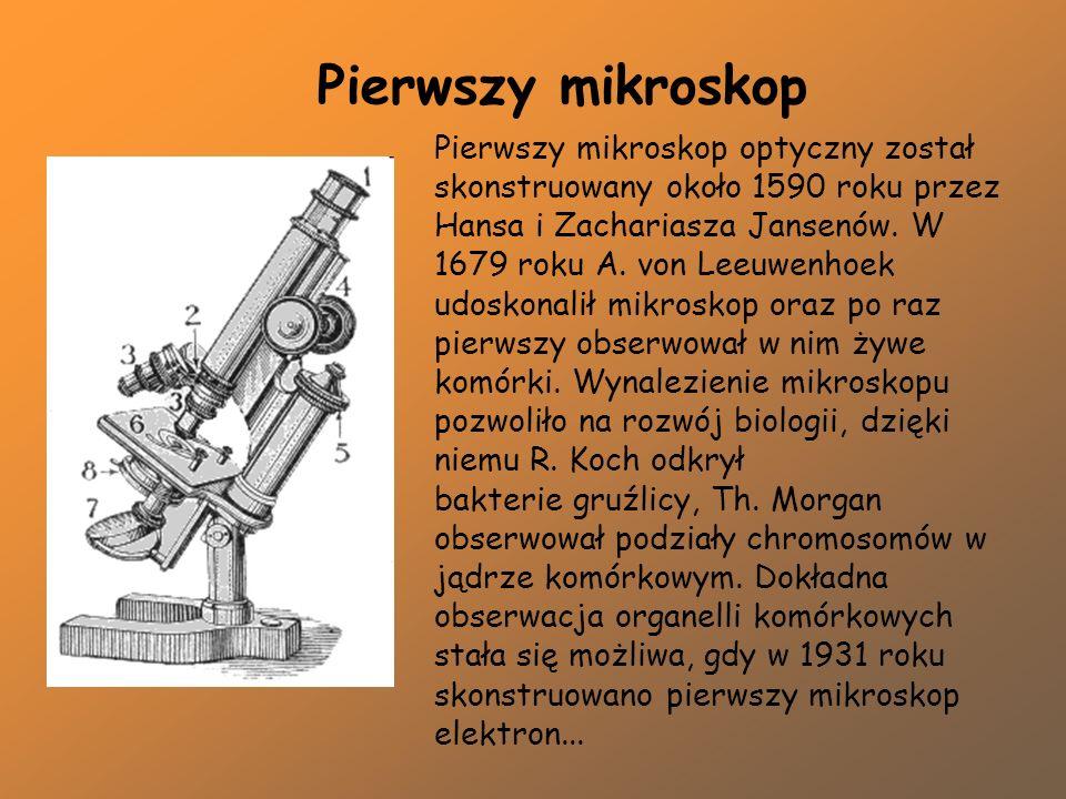 Mikroskop optyczny biologia mikroskop optyczny levenhuk