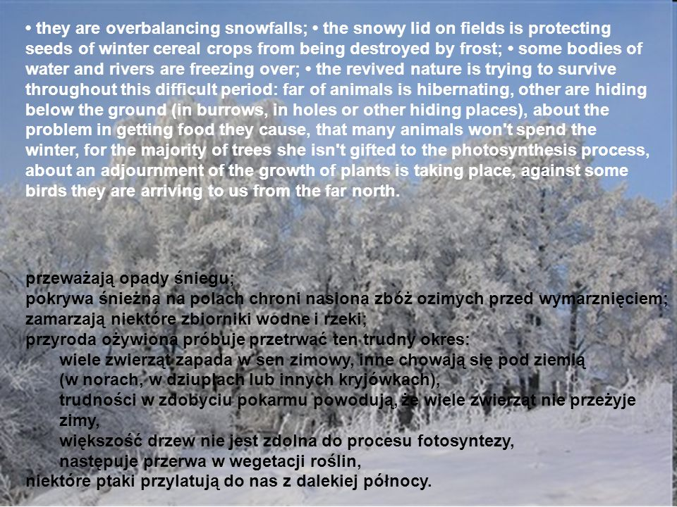 • they are overbalancing snowfalls; • the snowy lid on fields is protecting seeds of winter cereal crops from being destroyed by frost; • some bodies of water and rivers are freezing over; • the revived nature is trying to survive throughout this difficult period: far of animals is hibernating, other are hiding below the ground (in burrows, in holes or other hiding places), about the problem in getting food they cause, that many animals won t spend the winter, for the majority of trees she isn t gifted to the photosynthesis process, about an adjournment of the growth of plants is taking place, against some birds they are arriving to us from the far north.