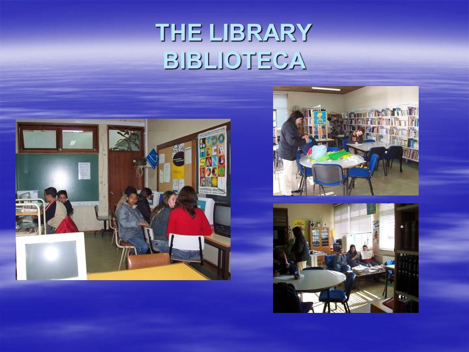 THE LIBRARY BIBLIOTECA