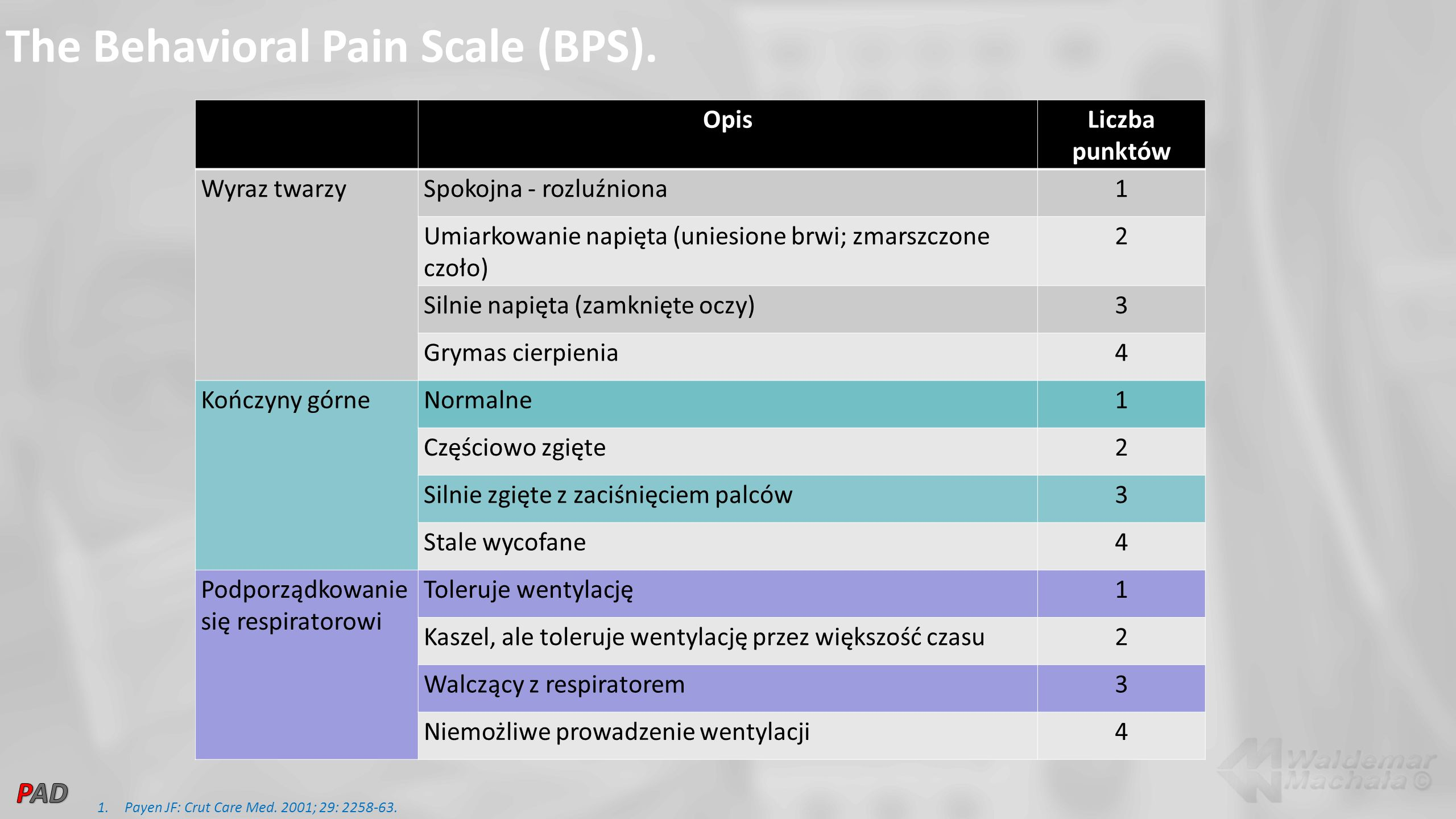 The Behavioral Pain Scale (BPS).