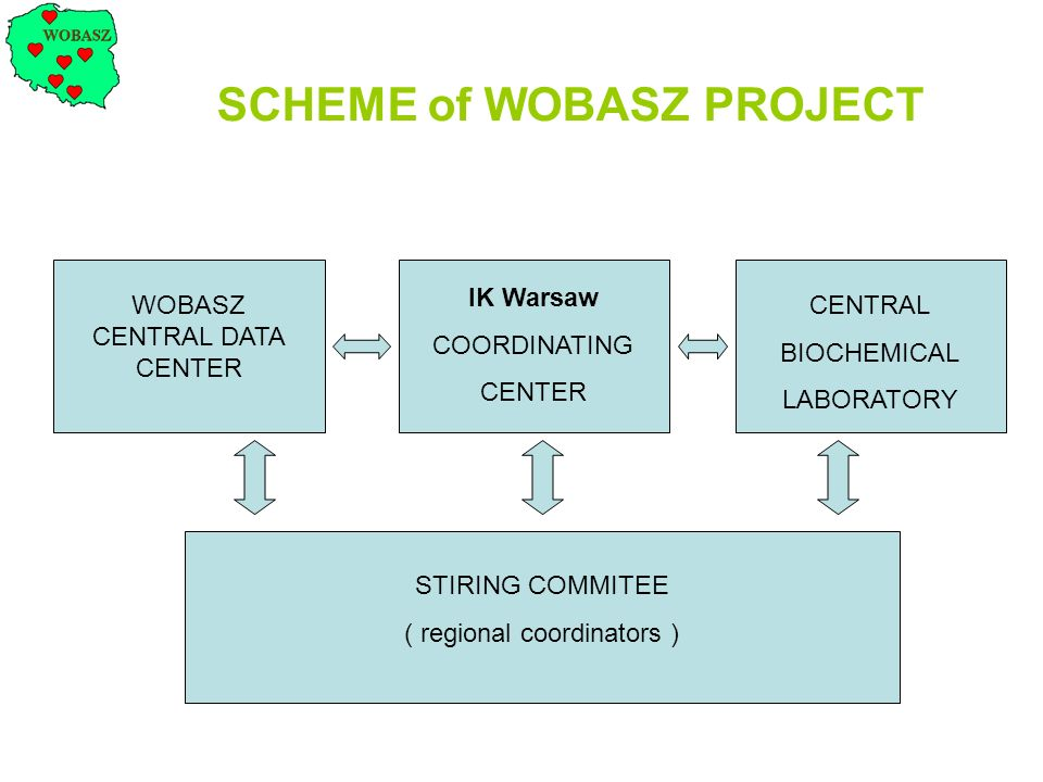 SCHEME of WOBASZ PROJECT