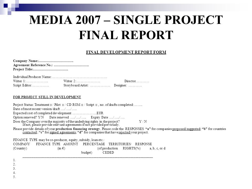 MEDIA 2007 – SINGLE PROJECT FINAL REPORT