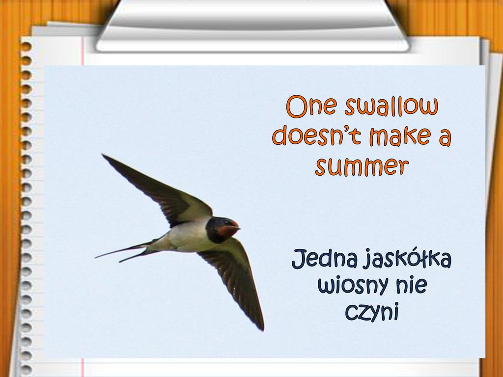 One swallow doesn't make a summer