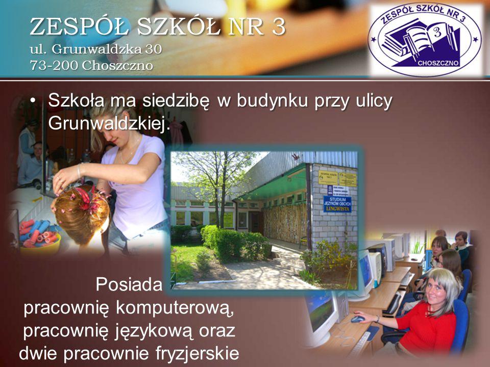 Zespół Szkół Nr 3 W Choszcznie Ppt Pobierz