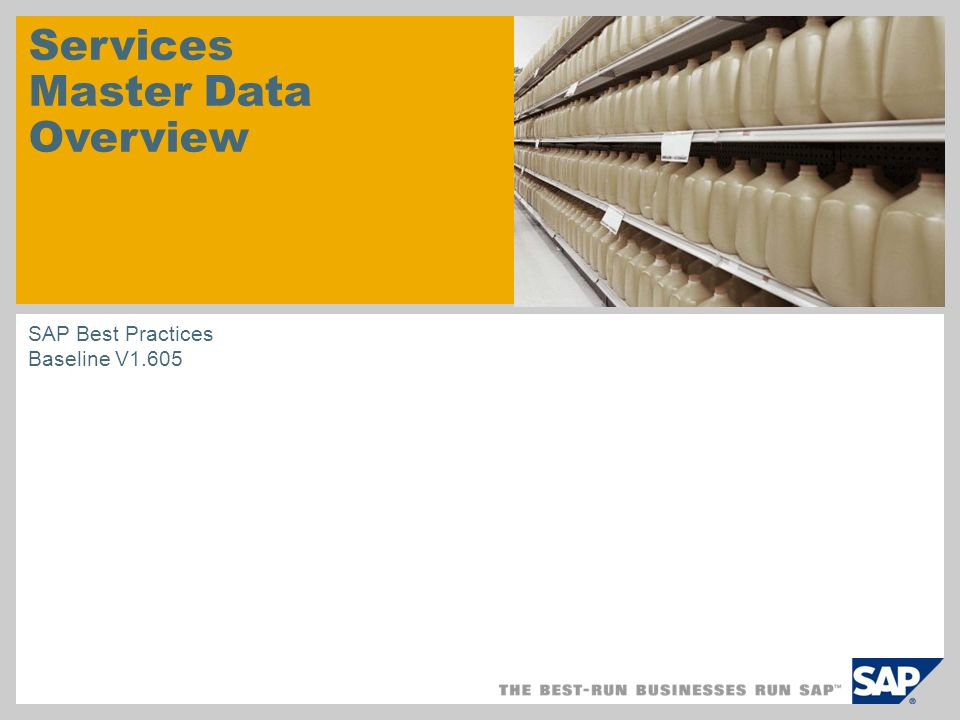 Services Master Data Overview SAP Best Practices Baseline V1.605