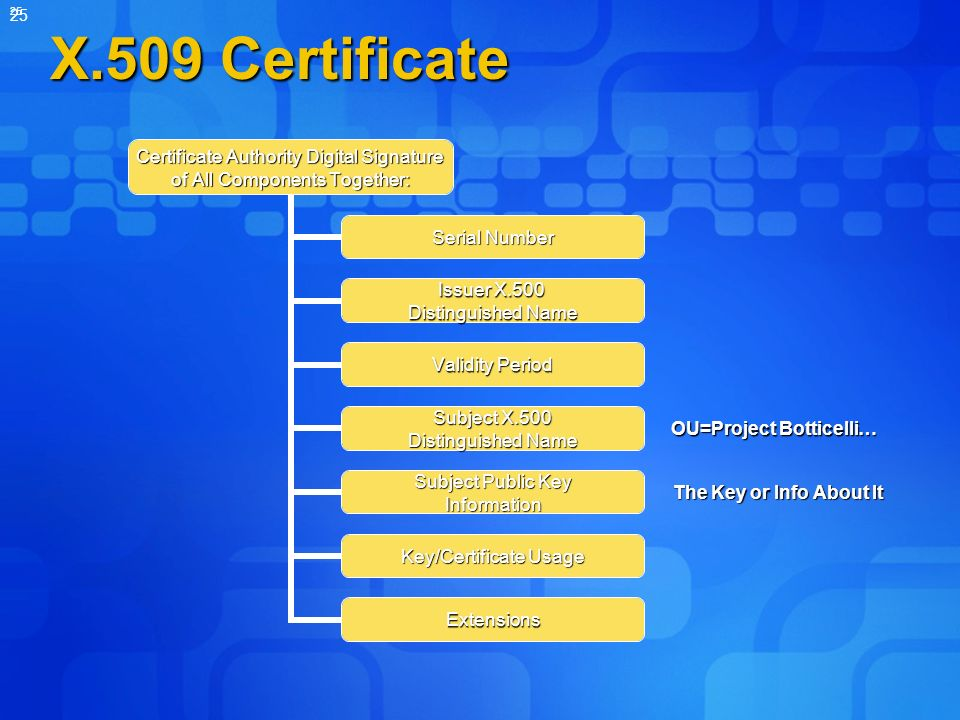 X.509 Certificate OU=Project Botticelli… The Key or Info About It