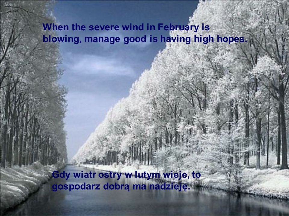 When the severe wind in February is blowing, manage good is having high hopes.