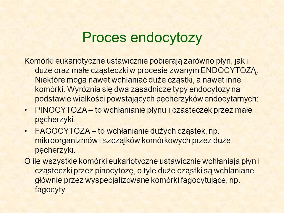 Proces endocytozy
